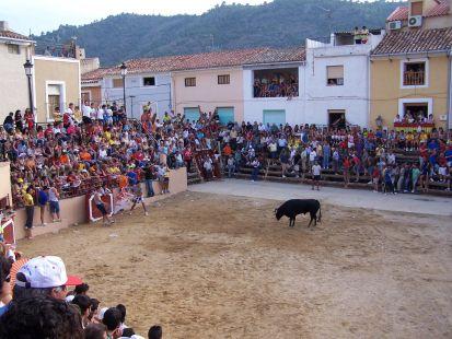 Cuarto Encierro Fiestas de Lietor 2007