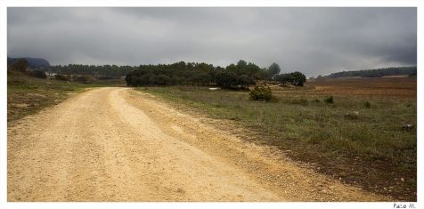 Camino de Banyeres de Mariola