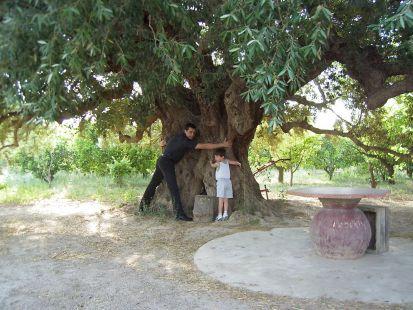 ¡Eso sí es un tronco!