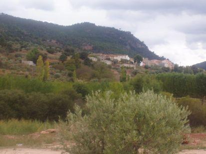 Tolosa ( Alcalá del Júcar)