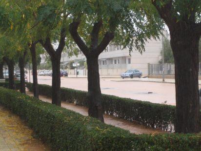 Inundaci�n en el Poligono Santa Ana, Cartagena