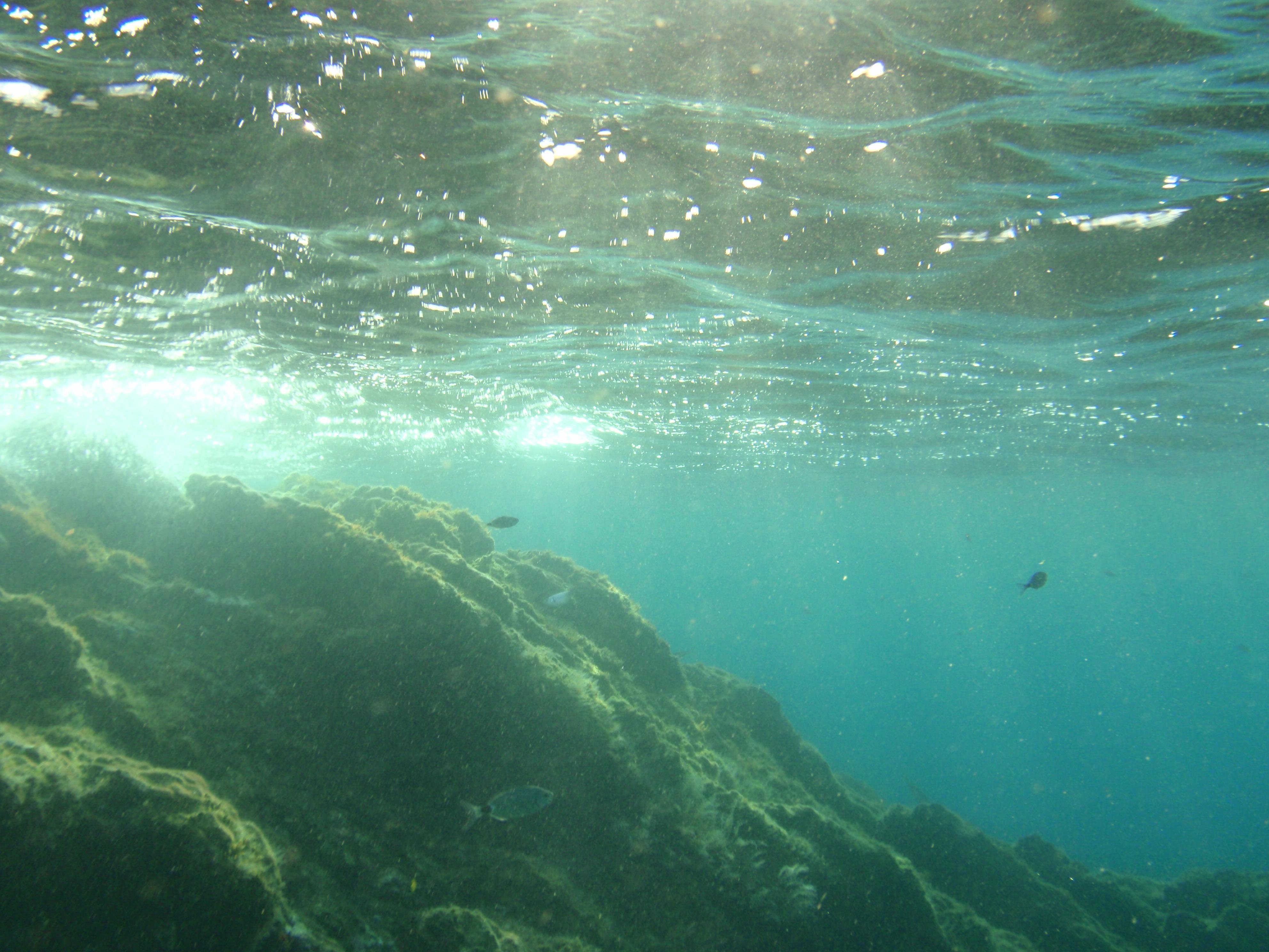 Bajo el agua de portman fotos de concurso fotogr fico el Imagenes de hoteles bajo el agua