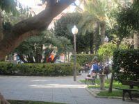 Los nuevos inquilinos del MARQ...los urinarios públicos son los árboles...!sálvese quien pueda!