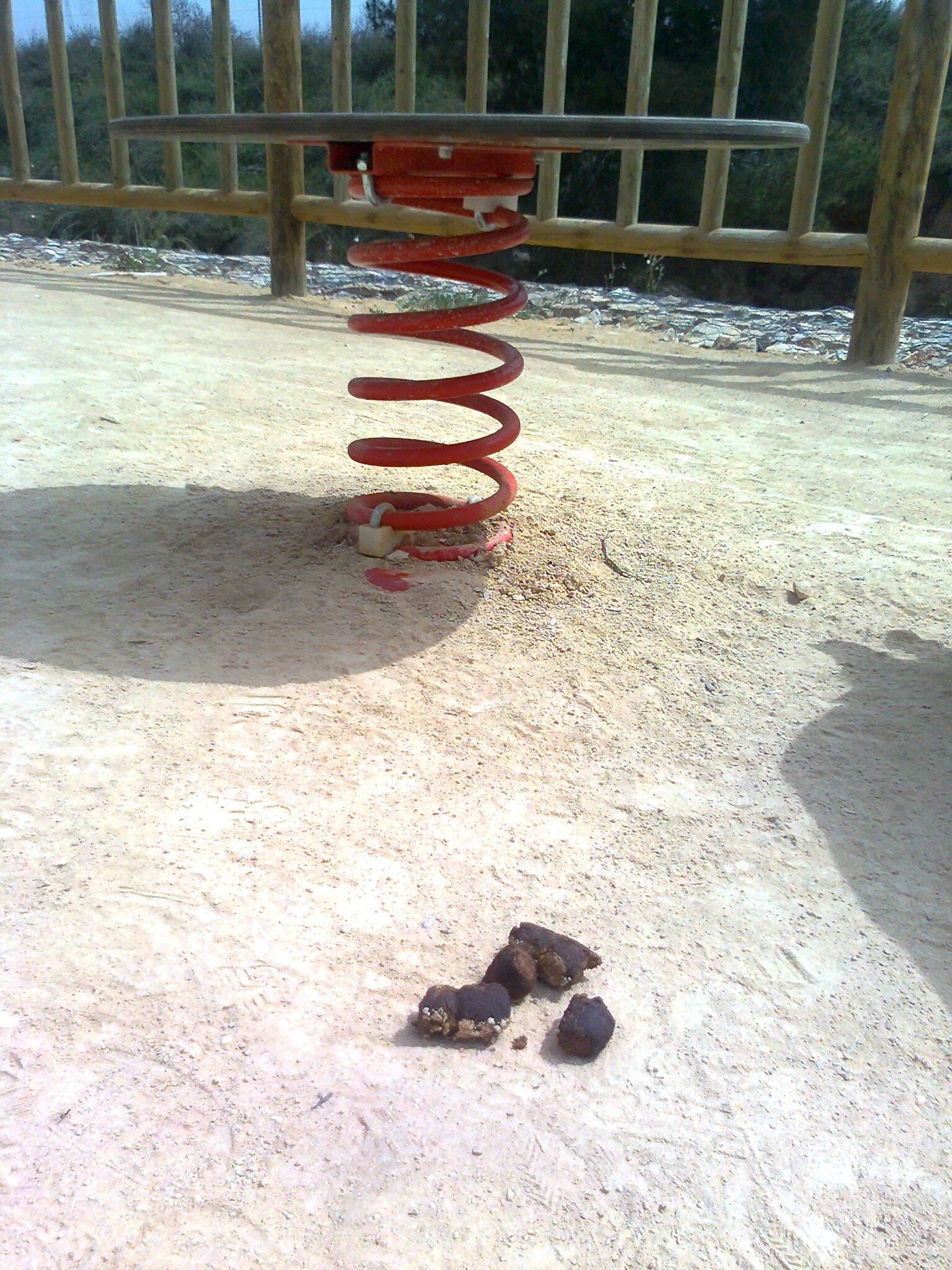 kakas perro en parque | fotos de Fotodenuncias de otros ...