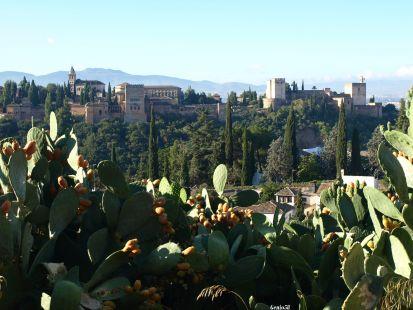 La Alhambra desde el mirador de la Rauda