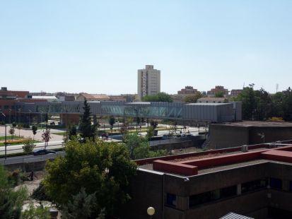 Tala de árboles en el Hospital de Albacete