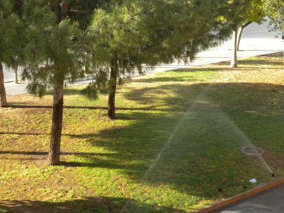 Derroche de agua en Espinardo (calle Antonio Rocamora)