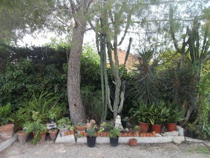 Villa Mari, Los Conejos