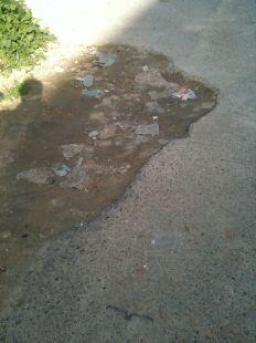 Vergonzoso estado del aparcamiento de la calle Picos de Europa (Nueva Cartagena)
