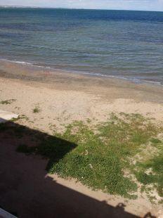 �C�sped en la arena...? Playa de Los Urrutias.