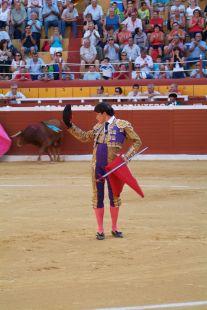 Novillada Feria 2013
