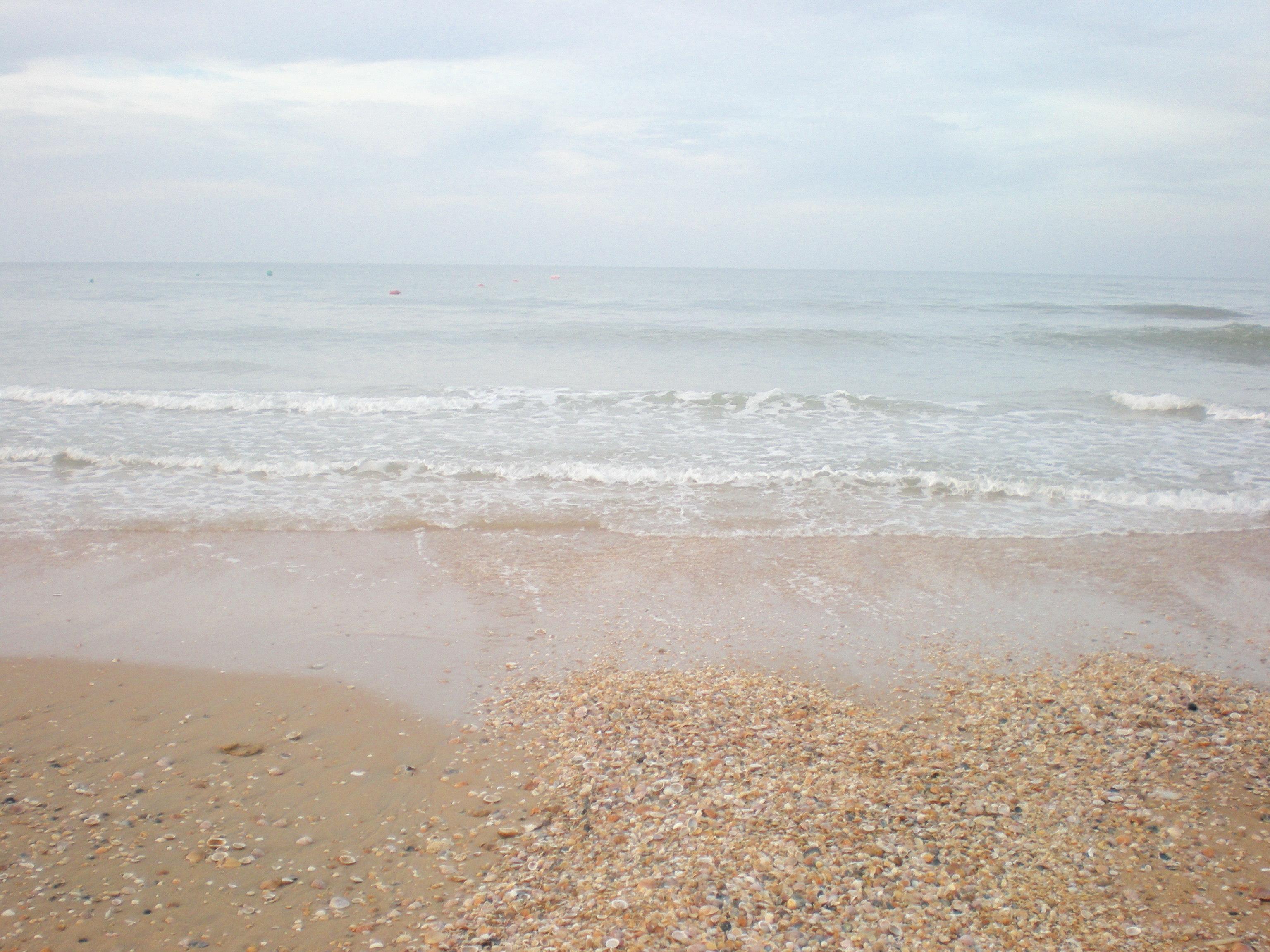 Las Chapinas Antes Playa Fotos Foto Del Verano