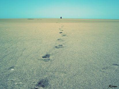 Lo que me llevar� al final ser�n mis pasos, no el camino...