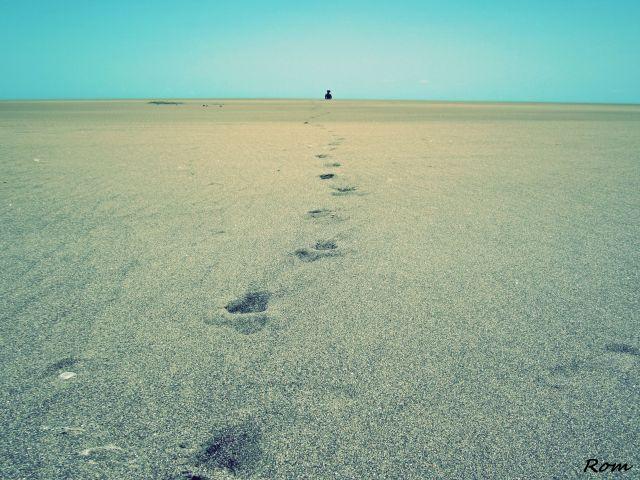 Lo que me llevará al final serán mis pasos, no el camino...