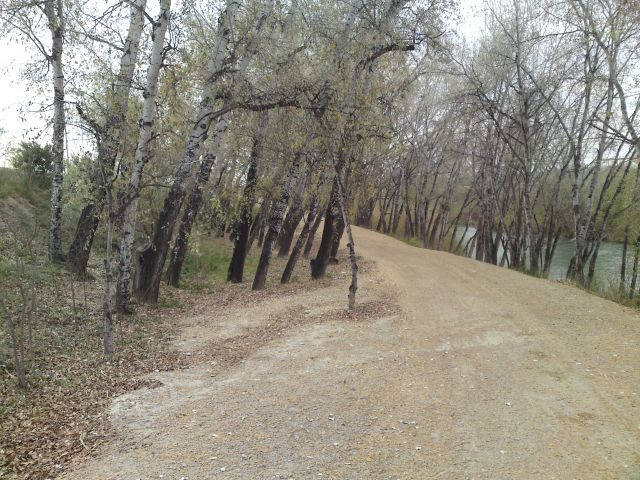 El Llano de Molina